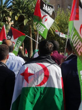 Manifestante saharaui con la bandera sobre la espalda